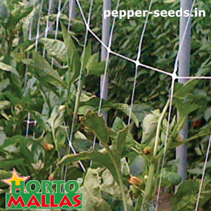 hortomallas mesh providing support to your crops.
